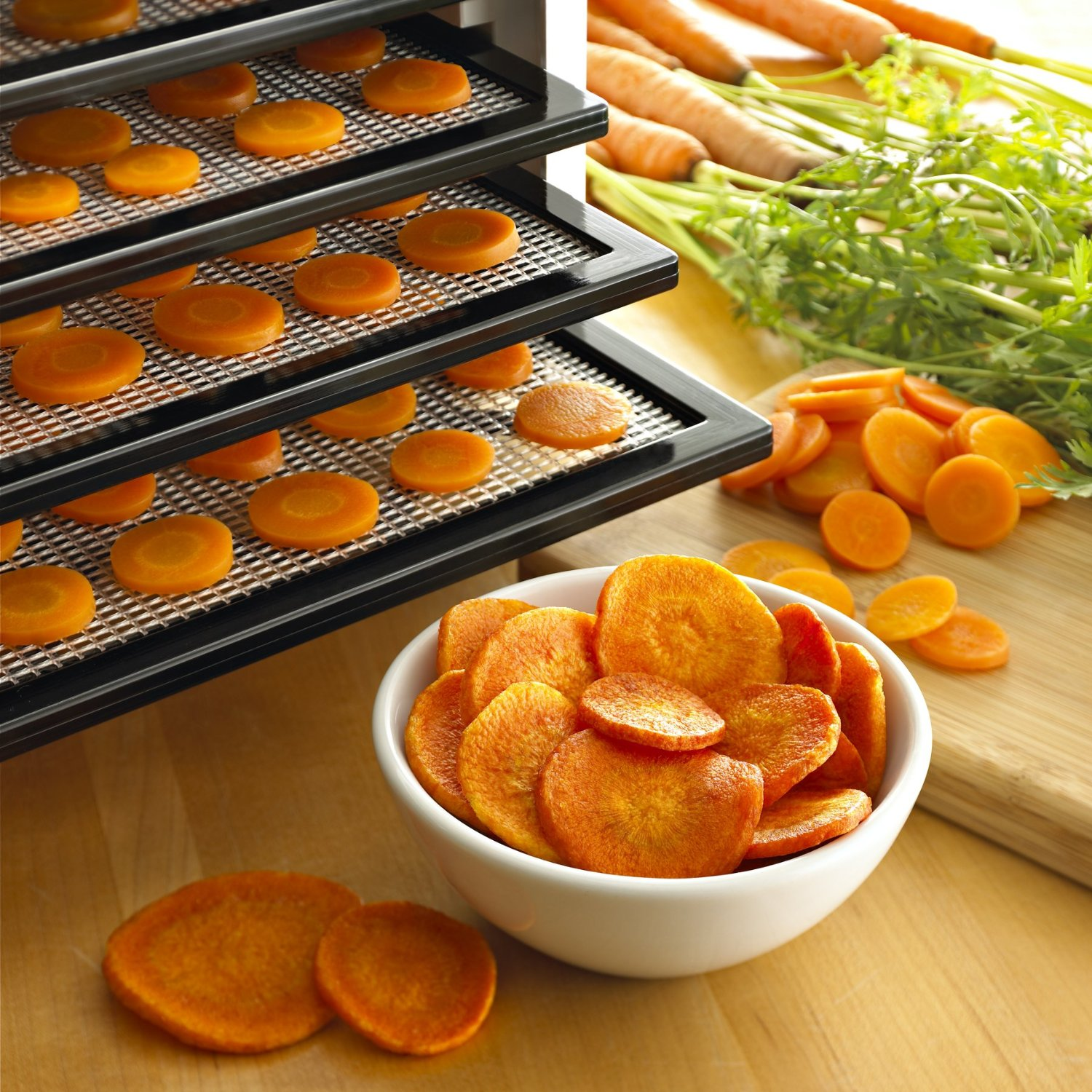 5 Best Food Dehydrator Reviews for 2016